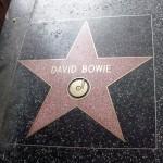 Bowie wordt een populaire voornaam in 2016
