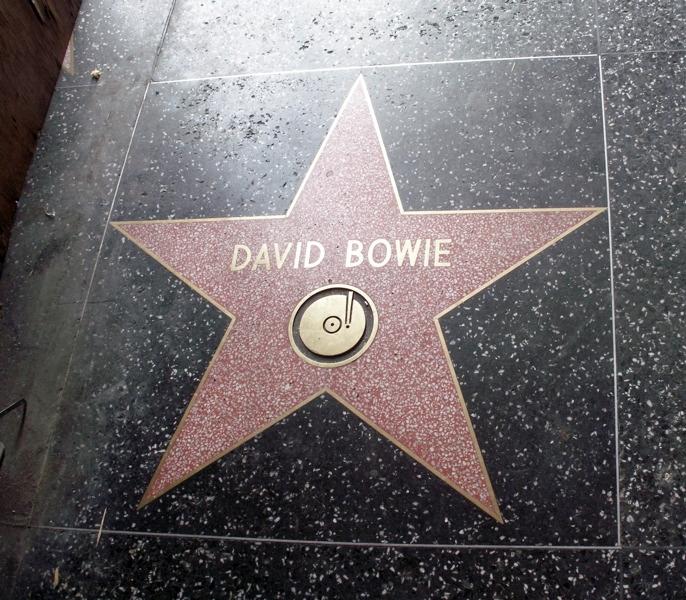david bowie ster